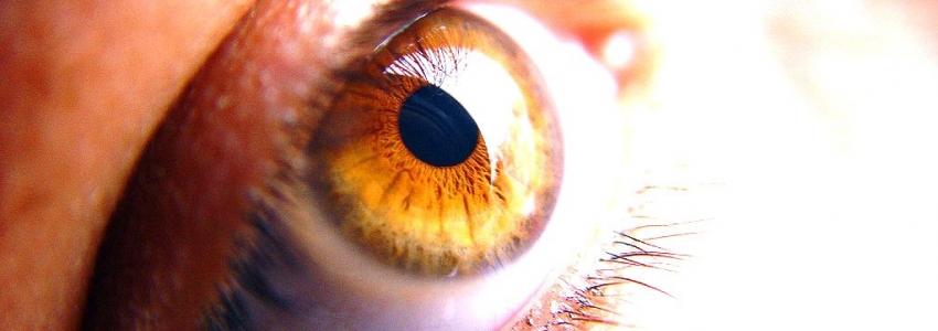 Что такое катаракта, причины, лечение, профилактика