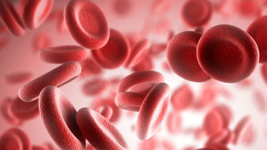 Тромбоциты в крови понижены. Причины пониженных тромбоцитов у ...